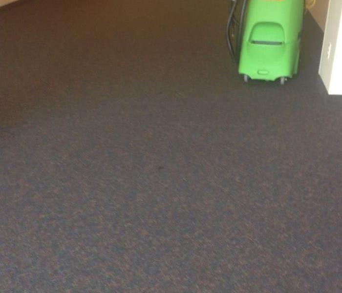 grey carpeting with green vacuum in the corner